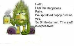 Hello. I Am the Happiness Fairy. I've Sprinkled Happy Dust On You. So Smile Dammit. This Stuff Is Expensive!