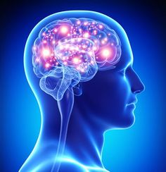 Can a Simple Brain Protein Stop Alzheimer's. Researches have discovered a gene that guards the developing brains of fetuses, reactivates in old age and may protect against Alzheimer's and dementia. Brain Diseases, Sleep Studies, Alzheimer's And Dementia, Dementia Care, Add Adhd, Adhd Help, Bipolar Disorder, Neurological Disorder, Human Body