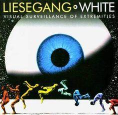 Visually massive http://www.coverdude.com/cd-covers/33725-liesegangwhite-visual-surveillance-of-extre.html