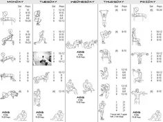 Week full body workout plan - fitness healthy workouts legs abs - project next - bodybuilding & fitness motivation + inspiration Best Gym Workout, Gym Workout Chart, Full Body Workout Routine, Gym Workouts, Workout Routines, Exercise Chart, Workout Body, Workout Style, Workout Guide