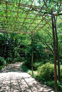 Pergola, Heian-Jing Shrine Gardens   by jojobob