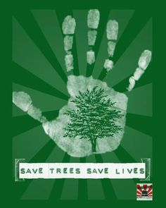 #LoveEarth #savenature #environmentalist #nature #environment #savetrees #PlantTrees #sustainability Re-post by Hold With Hope