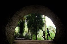 Tahura Trail in Bandung, West Java, Indonesia Pic by Adventure III Running Race, Trail Running, Asia, Adventure, Cross Country Running, Adventure Movies, Fairytale, Treadmill