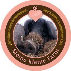 Schwein 179