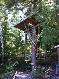 my sister built this tree fort at our cottage