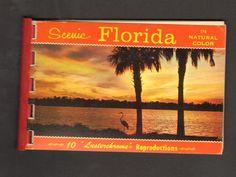 Undated Souvenir 10 Miniature Photographs Scenic Florida in Natural Color