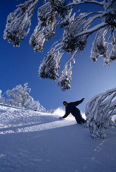 That's Australia, too! Snowy Perisher, NSW