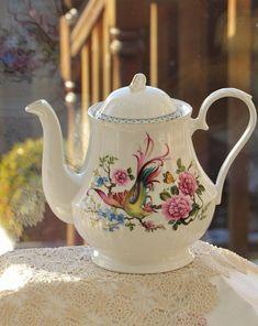 Vintage Royal Grafton Teapot, Martinue Bird of Pradise Teapot, English Bone China Teapot, Collectable
