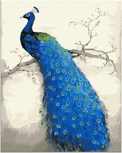 Handwork gift Blue Peacock picture canvas DIY acrylic paints painting by numbers vintage home decor wall art pictures E316(China (Mainland))