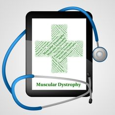 Muscular Dystrophy Guide for care homes and nursing homes directory for Muscular Dystrophy in UK https://www.caredirectory.co.uk/search-type/Muscular-Dystrophy