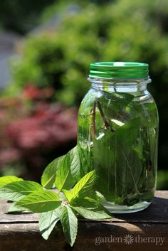 Sun tea is just about the most simple way to make a summer beverage. Here are two ways to infuse tea with fresh herbs or dried tea!