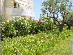 Vakantiehuis Appartement Antibes - Antibes - Cote d'Azur - Alpes Maritimes Zuid Frankrijk - Zwembad gedeeld
