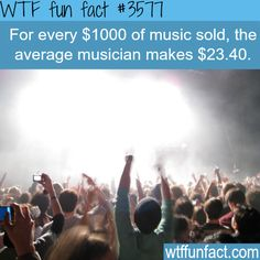 How much money do musicians make -  WTF fun facts