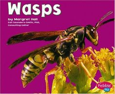 Wasps (Bugs Bugs Bugs) by Hall, http://www.amazon.com/dp/0736861270/ref=cm_sw_r_pi_dp_nUEsqb01ZPH69