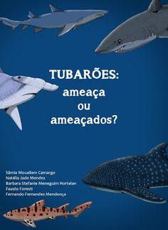 Desmistificando os tubarões ~ Ciência na Medida    Tubarões: ameaça ou ameaçados? Material didático gratuito sobre Biologia dos tubarões.    #science #escola #fish #ocean #biologia #biology #gratis #livros