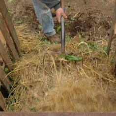 7 Solutions to Common Compost Problems: Too soggy? Too dry? Too many bugs? Here's what to do.