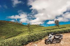 Roteiro de 16 dias no Sri Lanka (a minha viagem)   Alma de Viajante Sri Lanka, Country Roads, Mountains, Nature, Travel, The Journey, Wayfarer, Naturaleza, Viajes
