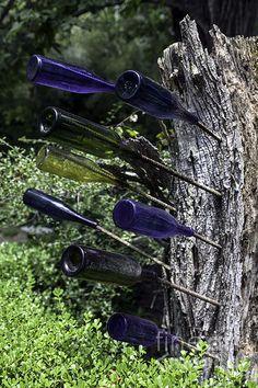 """Bottle Tree Detail,"" photo by Lynn Palmer"