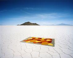 Carpet, 2010 by Scarlett Hooft Graafland