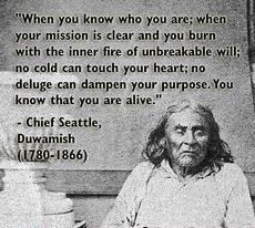 When you know who you are; when your mission is clear and you burn with the inner fire of unbreakable will; no cold can touch your heart; no deluge can dampen your purpose. Native American Prayers, Native American Spirituality, Native American Wisdom, American Symbols, Native American Women, Native American Indians, The Words, American Indian Quotes, American Art