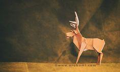 Fumiaki Kawahata Origami Reindeer. Folded and photographed by Himanshu Agrawal, Mumbai, India.