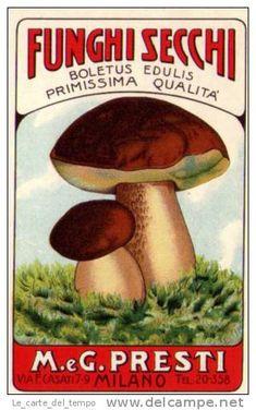 Etichetta (alimentari) Funghi Secchi Boletus Edulis M.eG.PRESTI - Milano  Anni´40