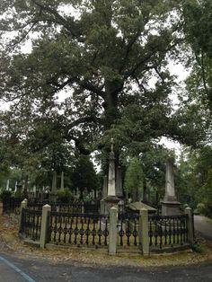 Park-like Cemetery, Hollywood Cemetery, Richmond, VA Hollywood Cemetery, Cemetery Monuments, Grave Markers, Memorial Stones, Study Help, Richmond Virginia, Graveyards, Beautiful Places To Travel, Gated Community