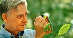 The real problem of humanity is the following: we have paleolithic emotions; medieval institutions; and god-like technology. And it is terrifically dangerous, and it is now approaching a point of crisis overall.  -E.O. Wilson