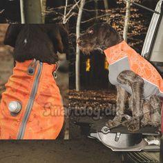 e6201472 De 56 bedste billeder fra Hundetøj i 2018