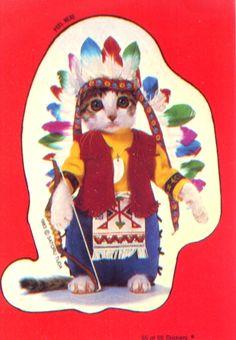 kitty chief