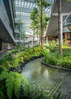 Modern Landscape Design, Landscape Architecture Design, Green Architecture, Landscape Plans, Modern Landscaping, Urban Landscape, Landscaping Ideas, Landscape Edging, Backyard Landscaping