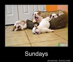 Sundays...this is totally me