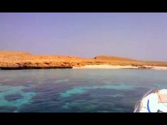 Isole Daymaniyat 2016 Sultanate Of Oman, Leaves