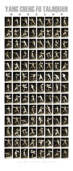 Taï Chi Forme 108 Yang : forme, TaiJi, Ideas, Qigong,, Qigong