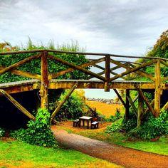 https://flic.kr/p/vB8i6E | Gorgeous little bridge in the Folkestone foreshore ... #upsticksandgo #folkestone #exploring #travel #tourist #unitedkingdom #michfrost #bridge #foreshore #naturephoto