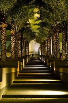Islamic Museum of Art Doha Qatar