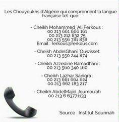 ☎Numéro de nos Machaykh francophones