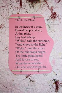 The Educators Spin On It: Are you willing to wake the seeds of change?  seed poem