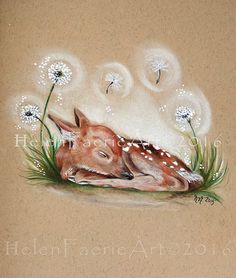 Art Print (27 x 19 cm) From my original Pencil Drawing 'Forest Faery Fawn' Fawn, Wildlife, Nature, Forest, Sleeping Fawn, Deer, Illustration by HelenFaerieArt on Etsy