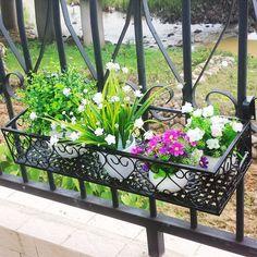 Balcony Gardening, Plants, Plant, Balcony Garden, Planets