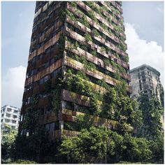 ruined skyscrapers - Поиск в Google