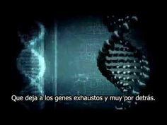 Un corto de Jason Silva, Apertura Radical #inspiraciondiaria