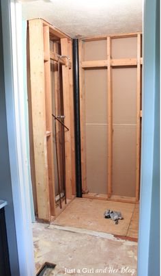 Master Bathroom Renovation Project