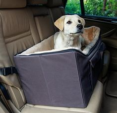 Buy Pet Car Seat Booster Dog Cat Carrier Basket Puppy Safety Auto Chair Small Tan At Online Store