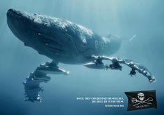 "Sea Shepherd Campaign: ""Until they can defend themselves, we will do it for them."" SeaShepherd.org"