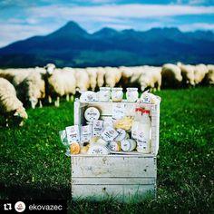 PREDAJ OVČÍCH VÝROBKOV!  #praveslovenske Ovčie oštiepky jogurty ovčí syr jarná bryndza a žinčica ...... @ekovazec ....... Opäť je tu jar naše ovečky sa nám odvďačujú za celoročnú starostlivosť a my sme začali s výrobou ovčích výrobkov. S predajom začíname od 18.4.2017. Objednávky nám môžete posielať od 1.4.2017 na @ekovazec