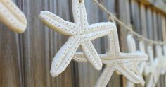 Salt dough is a great medium for making these realistic-looking starfish. We decided to hang them on a piece of jute to make a really cute g...