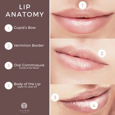 Interested in lip augmentation? Know how to talk the talk so you can make the most of your consultation.