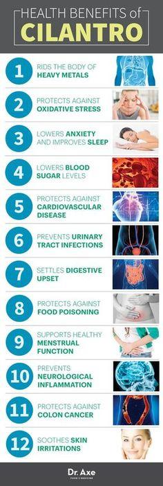 Cilantro Health Benefits Infographic