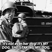 Lewis Nixon throwing a bitch fit about his dog Series Movies, Movies And Tv Shows, Tv Series, Band Of Brothers Quotes, Movie List, Movie Tv, Lewis Nixon, Tv Band, Hero Tv Show